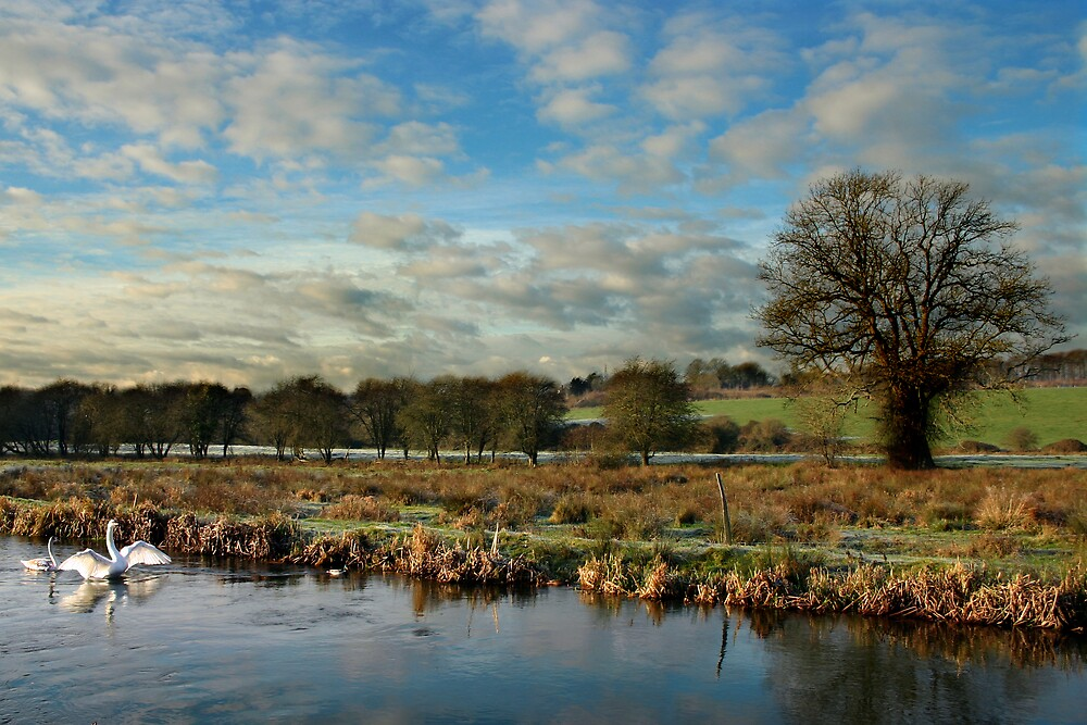 River Itchin, Nr. Compton Lock - by Christopher Newberry