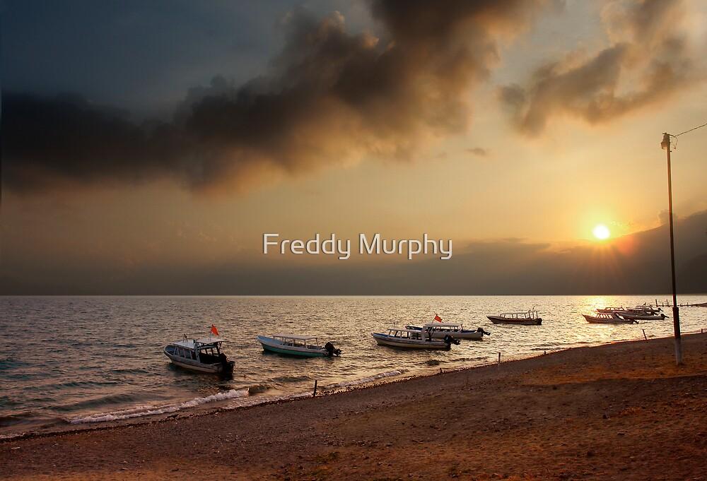 Sleeping Boat by Freddy Murphy