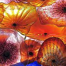 Colors Of Orange by Susan McKenzie Bergstrom