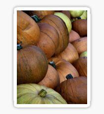 Pumpkin Pack Sticker