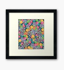 Candy Colored Succulents Framed Print