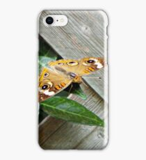 Butterfly Perched on a Leaf iPhone Case/Skin