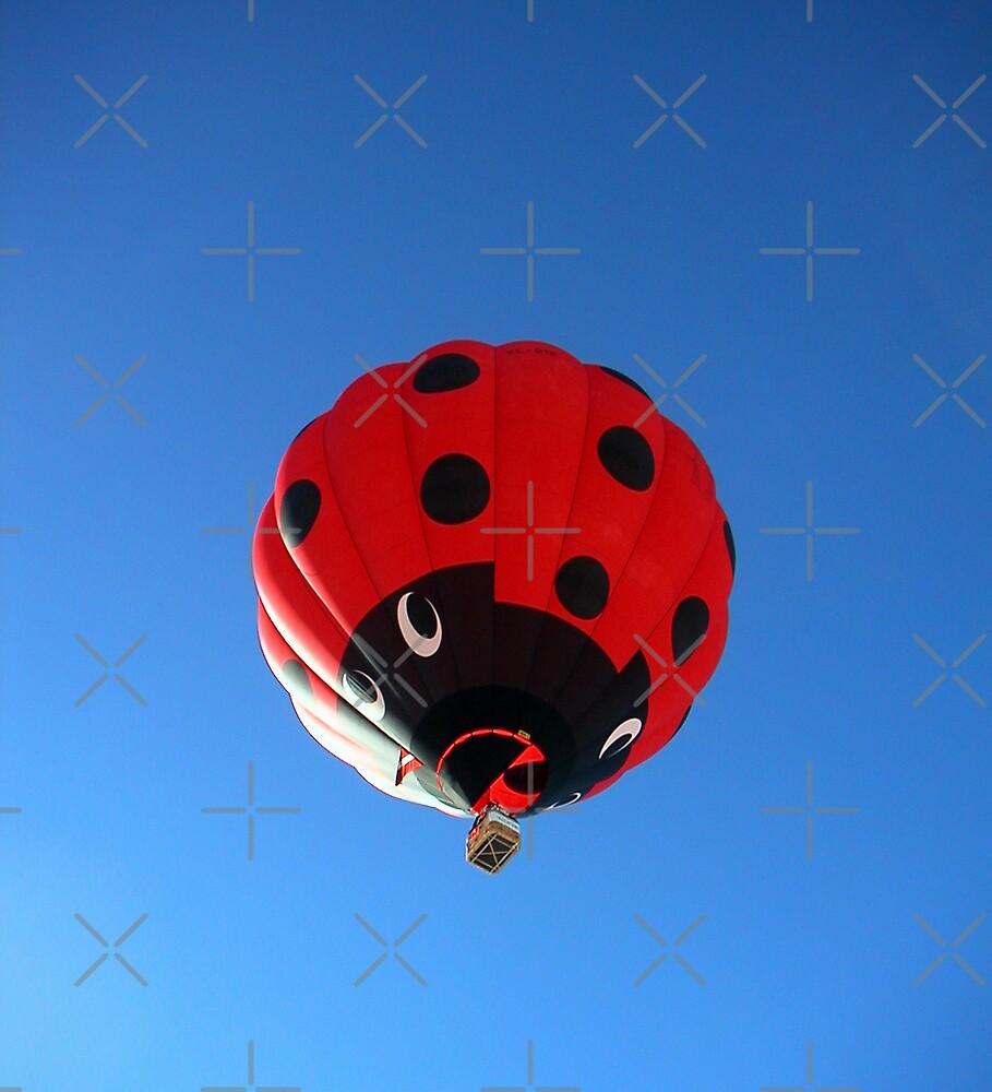 giant lady bug by poupoune