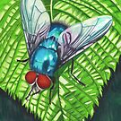 A blue fly on a leaf by cathyscreations