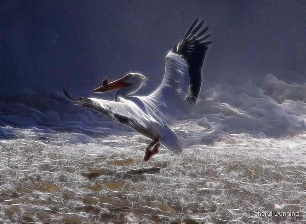 pelican landing by Cheryl Dunning