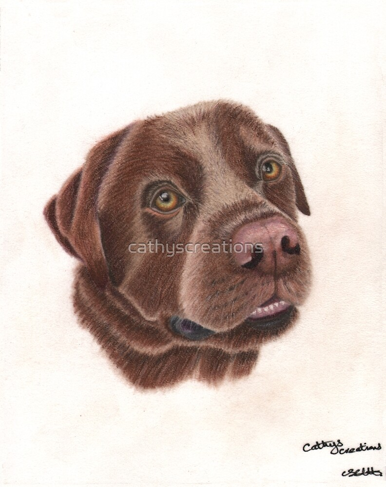 A chocolate Labrador by cathyscreations