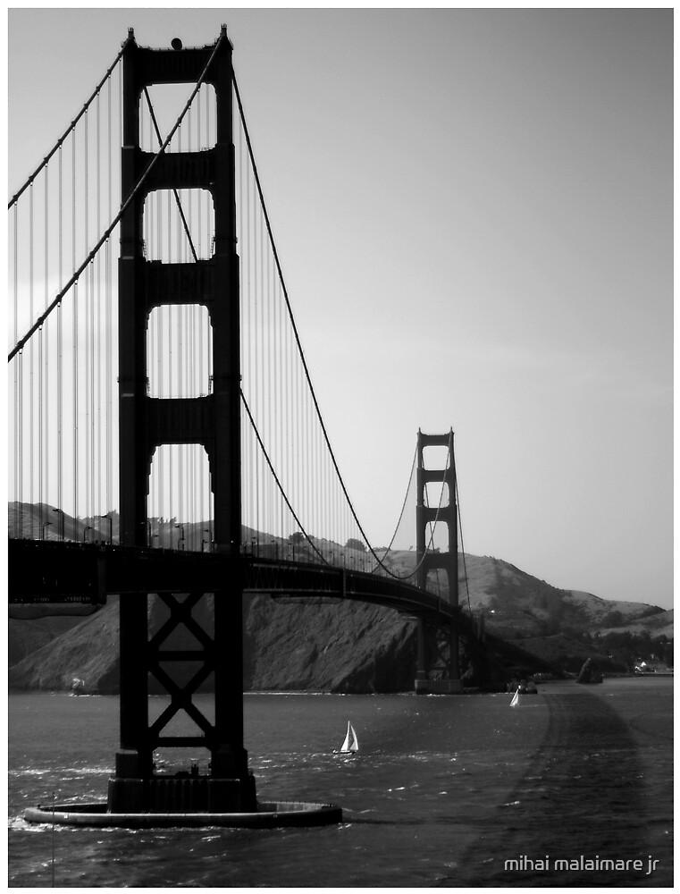 San Francisco 06 by mihai malaimare jr