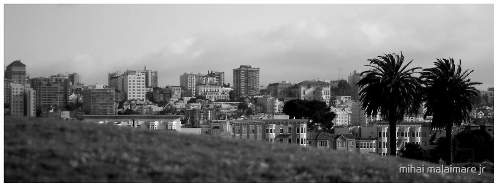 San Francisco 08 by mihai malaimare jr
