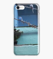 Two Little Budgeriegars iPhone Case/Skin