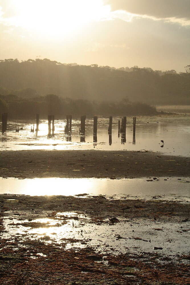 Sundown over Dee Why Lagoon 3 by Spirit Level Creations