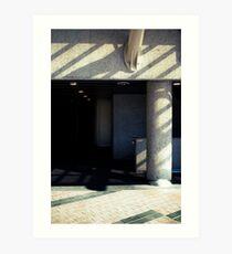 in praise of shadow  Art Print
