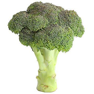 Broccoli by nathanielsturzl