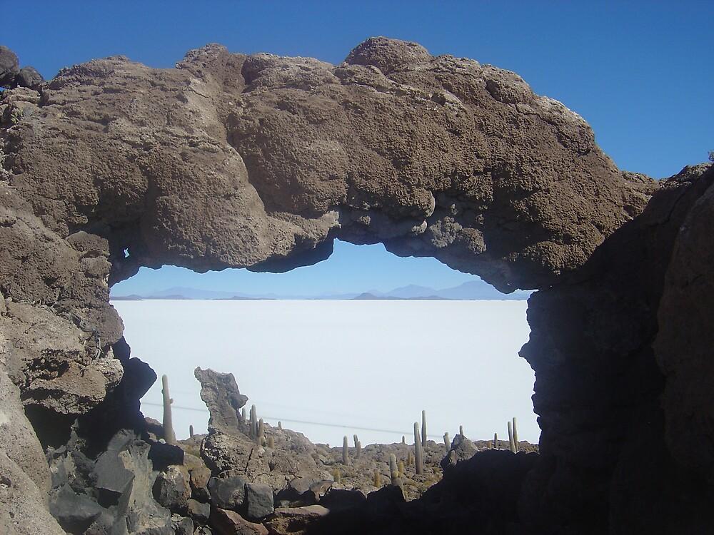 Sal de Uyuni in Bolivia by mojgan