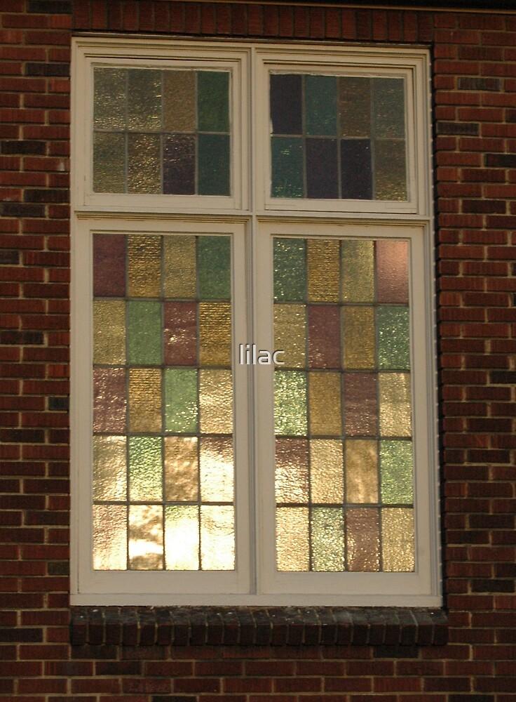 Shiny Window  by lilac