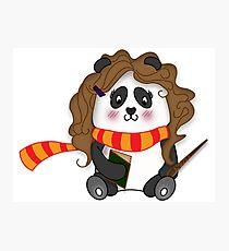 Potter Panda Pals - Brains Photographic Print