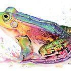Rainbow Prince by Karen  Hull