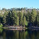 On the lake  by Brandi  Hart