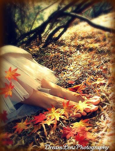 Fall  by dreamlenz