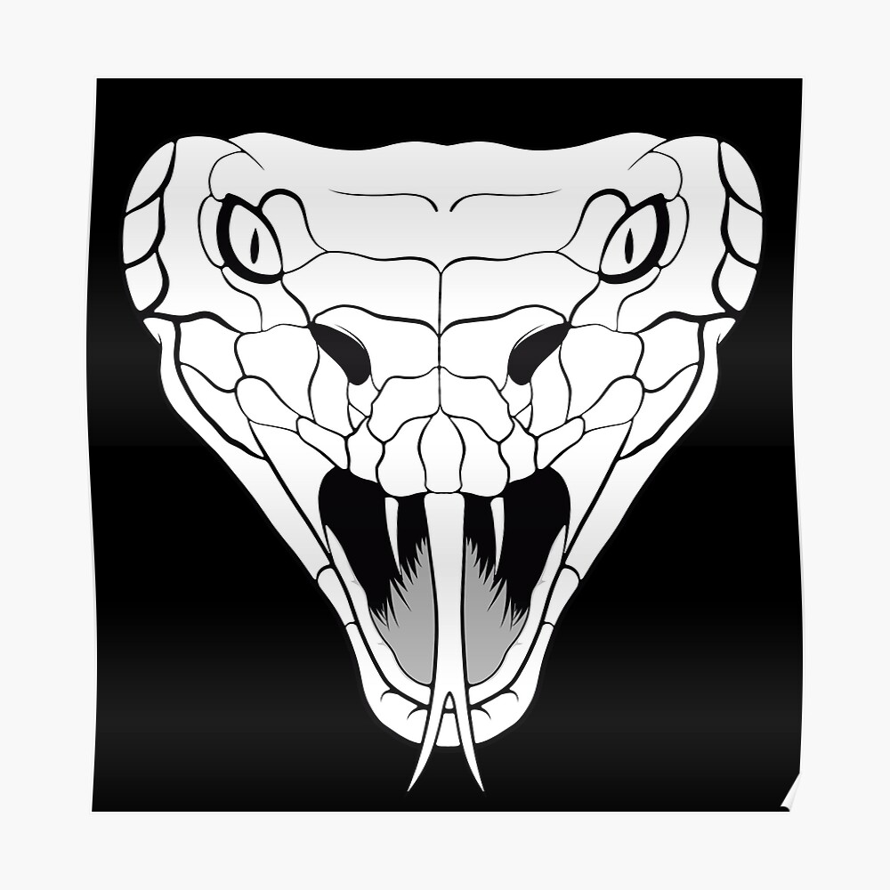 Snake head line-art Poster