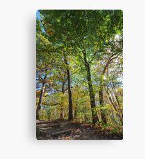 Palisades-Kepler State Park #4 Canvas Print