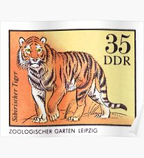 1975 East Germany Zoo Tiger Postage Stamp Poster