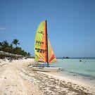 Caribbean Beach by Daniela Weil