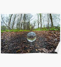 Crystal Ball Woods Poster