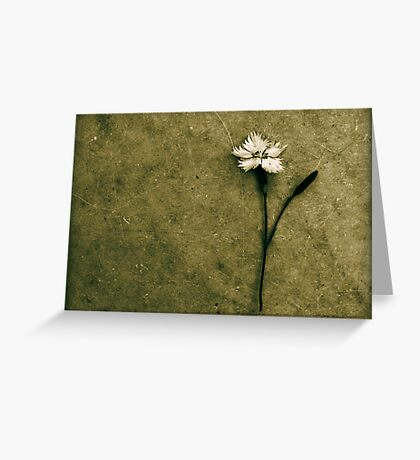 Will You Stay With Me. Will You Be My Love. Greeting Card