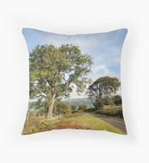 Brecon Beacons A glorious morning greets visitors to the hills. Throw Pillow