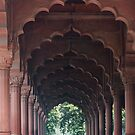 Indian Girl at Diwan-i-Aam, Red Fort, Delhi by Petr Svarc