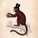Vintage Affe von Constanze von der Goltz
