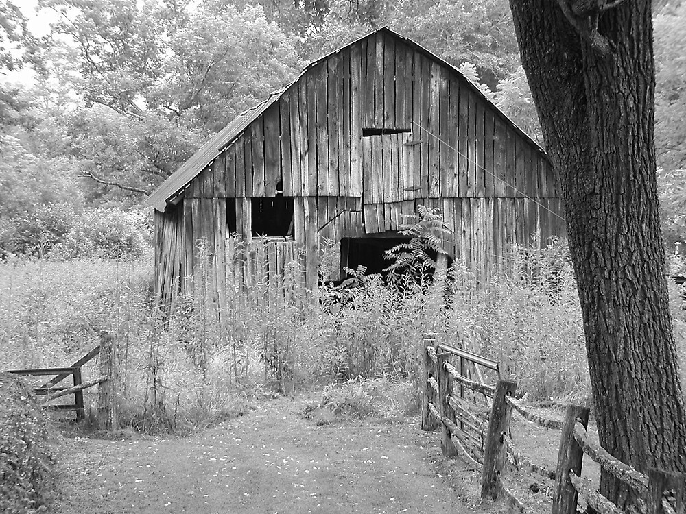 The Old Family Barn by hbryson