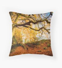 Autumns Golden Colours Throw Pillow