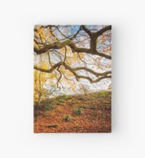 Autumns Golden Colours Hardcover Journal