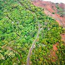 Waimea Canyon Road by Caleb Ward