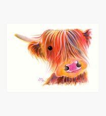 Schottische Hochlandkuh PRiNT 'SWEET SATSUMA' von Shirley MacArthur Kunstdruck