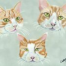 Three ginger cats by cathyscreations