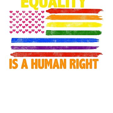 Equality Is A Human Right LGBT Flag T-Shirt by Sinjy