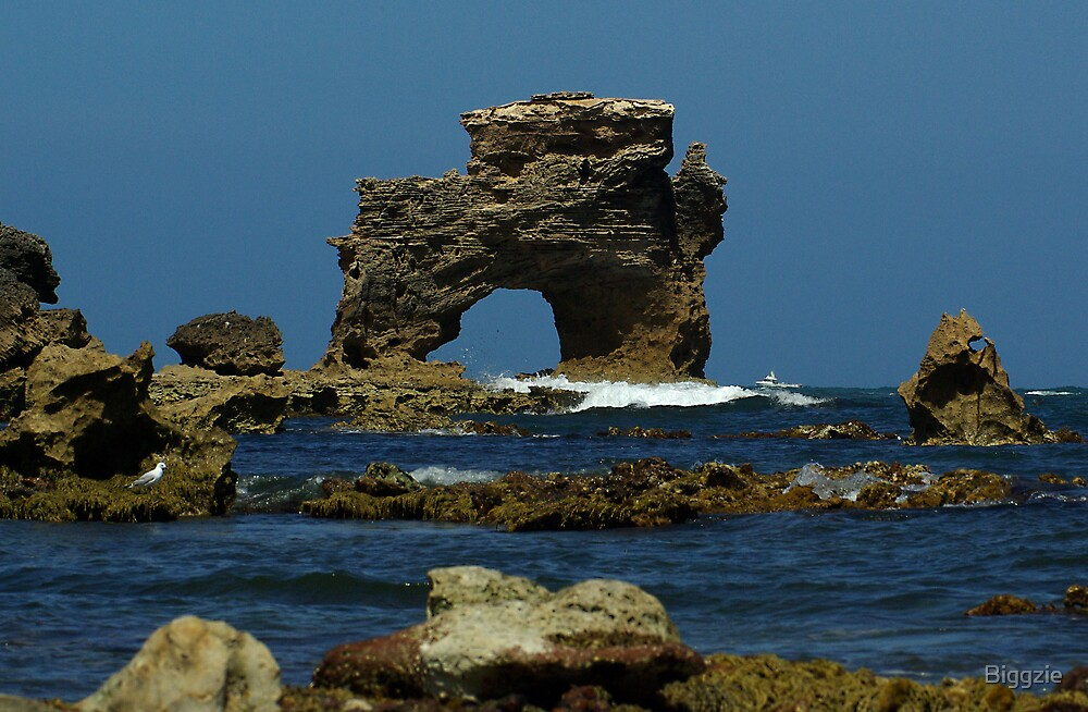 The Captains Head Rock by Biggzie