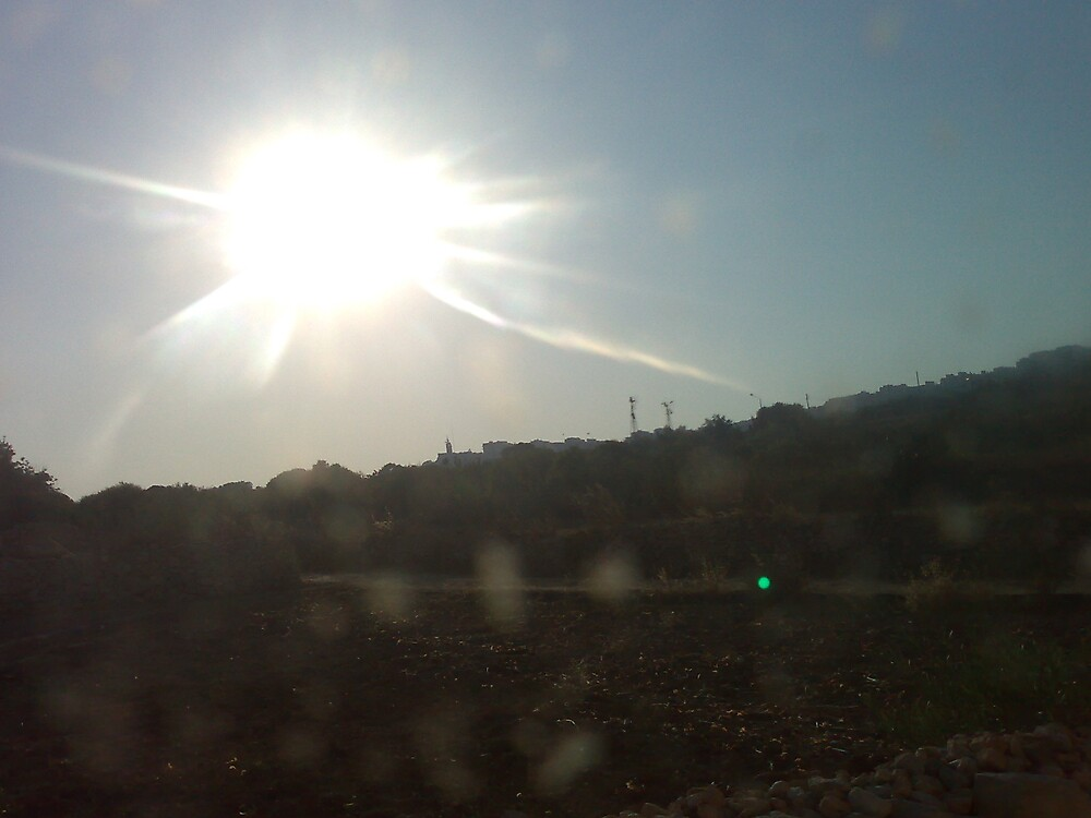 Shine on field by Desiree D