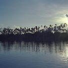 Palm Tree Dusk by Kristin Hamm