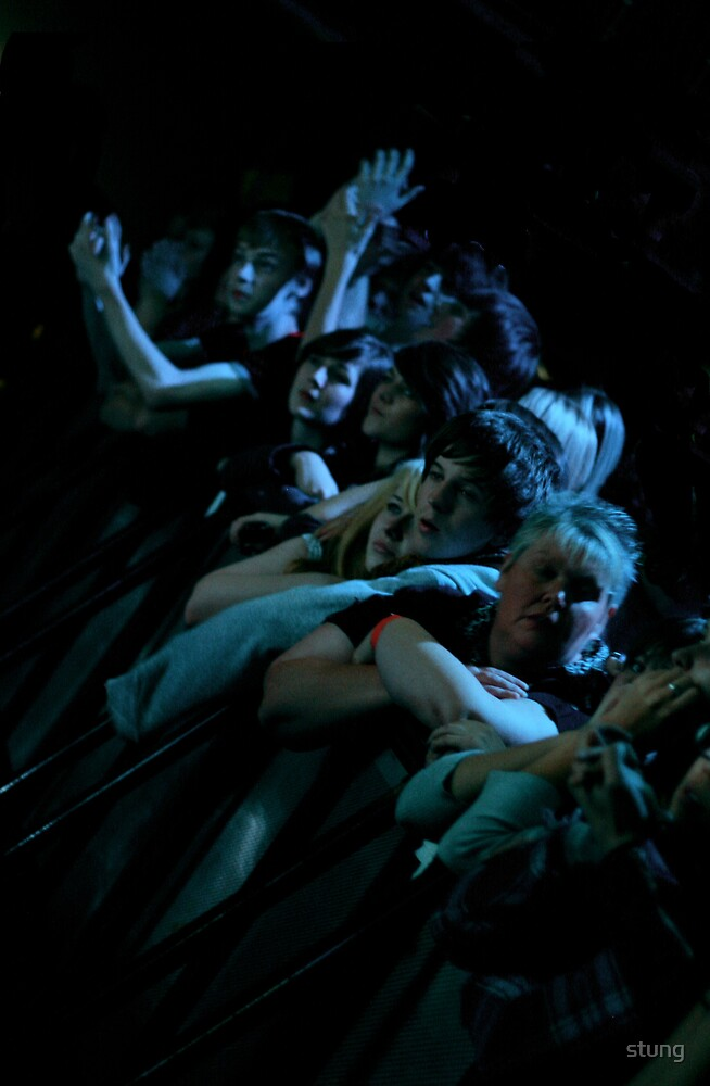 Pete Doherty Crowd  by Stung  Photography