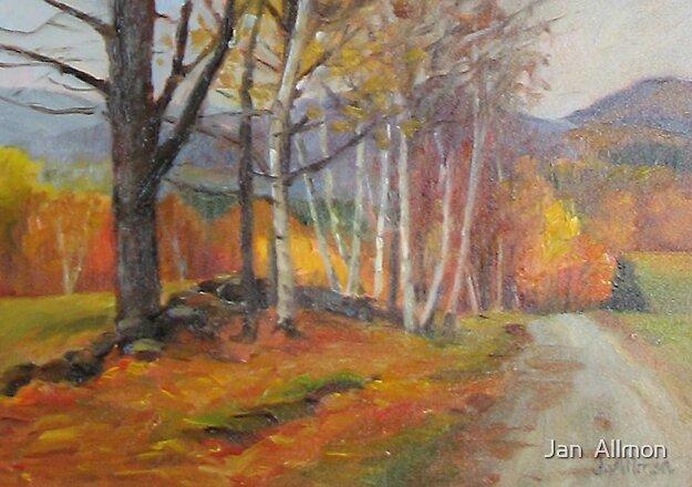 Birch Path by Jan  Allmon
