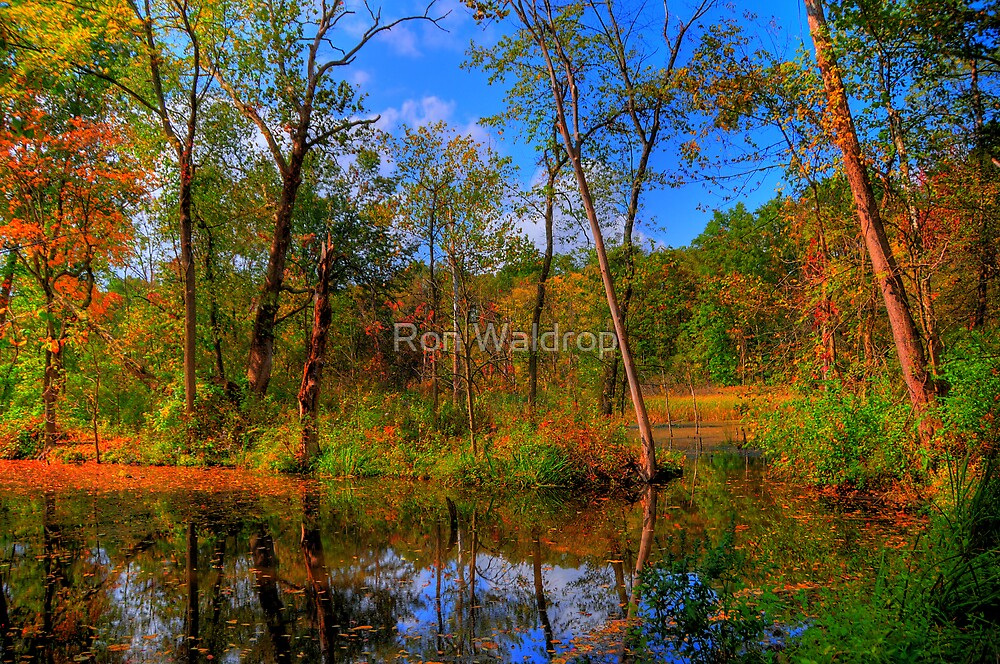 Forever Autumn by Ron Waldrop