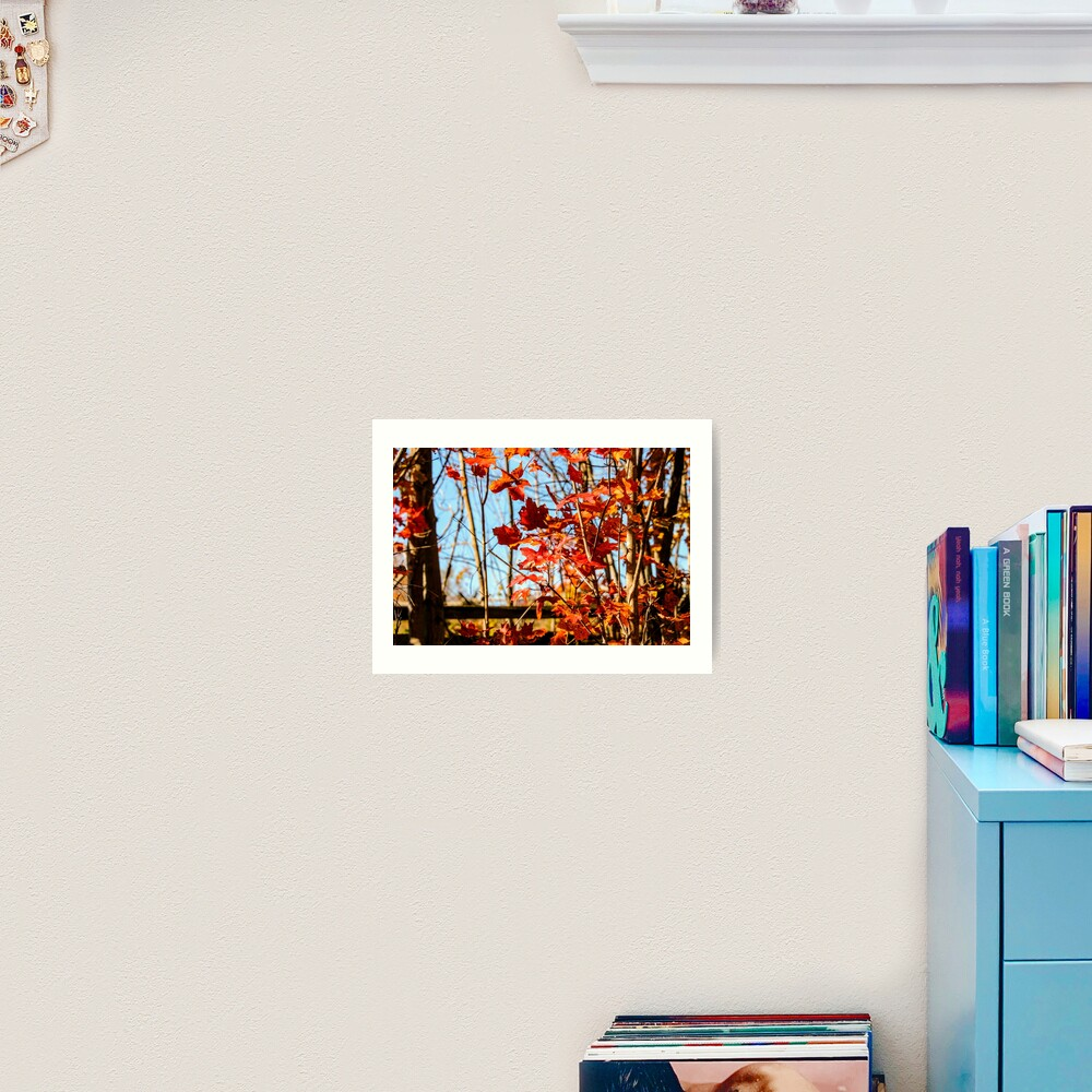 Autumn Joy Art Print