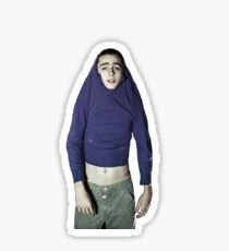 timothee chalamet Sticker
