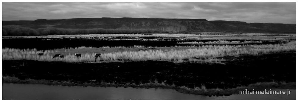 patagonia 02 by mihai malaimare jr