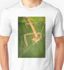 Chinese Praying Mantis Unisex T-Shirt