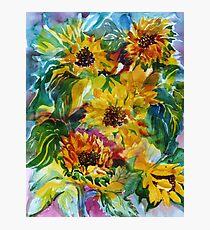Sunflowers a la Somis Photographic Print