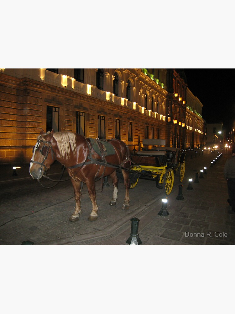 Horse and Buggy by alwaysdrc